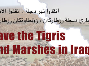 Workshop on the Campaign to Save the Tigris and Marshes, ICSSI Conference 2012