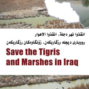 Call for Papers: Save the Tigris and the Iraqi Marshes Campaign