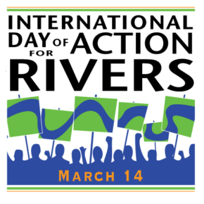 Press Release: Save the Tigris Campaign Participates in the International Day of Action Against Dams and For Rivers, Water and Life