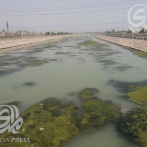 """Water Scarcity in Iraq: Residents of Al-Majar Al-Kabeer: """"Our river is becoming a swamp of algae and waste"""""""