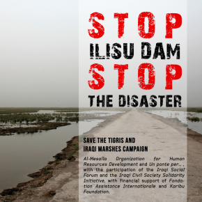 Open Letter to the Iraqi Government, the Kurdistan Regional Government from the Save the Tigris and Iraqi Marshes Campaign