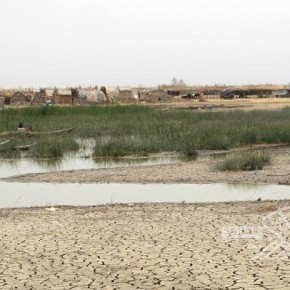 Ministerial Crisis Cell Arrives to the Marshes of Dhi Qar Next Week