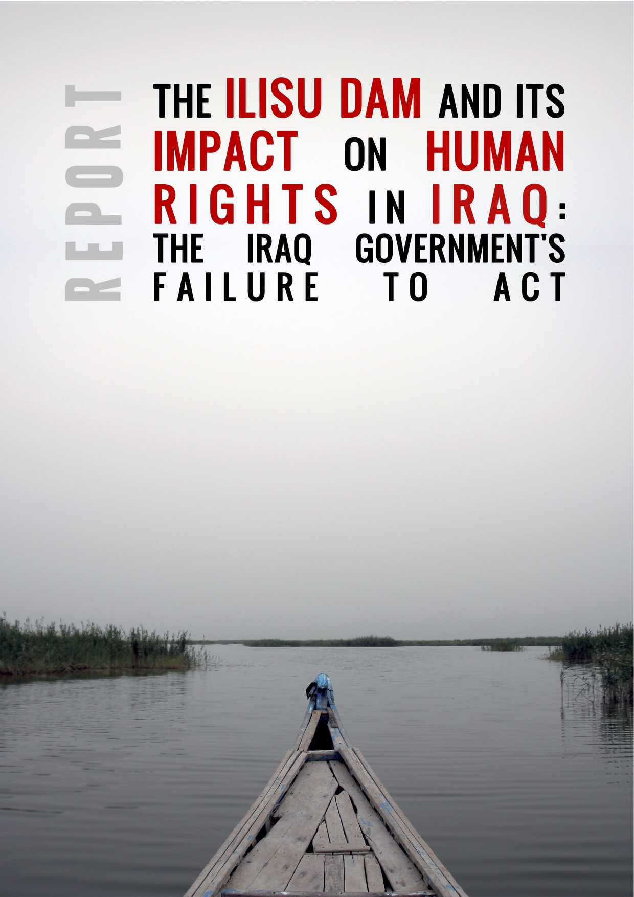CESCR'Iraq_Submission by Save Tigris Campaign