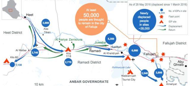 Statement on Iraq and Falluja by UN OCHA