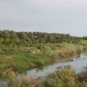 London hosts academic conference on Iraq's water resources