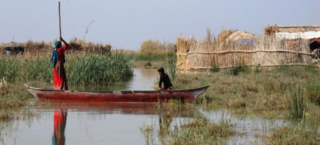 World Wetlands Day: what measures will be taken to safeguard the Iraqi Marshes?