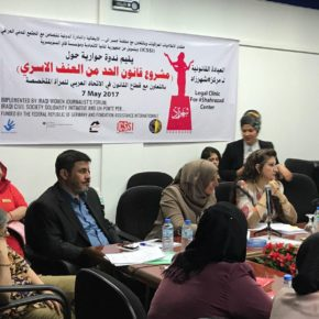 Anti-Domestic Violence Law,  Shahrazad Seminar in Baghdad