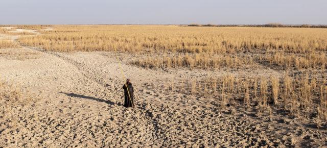 Postponement of Ilisu Dam Reservoir is Not a Success!