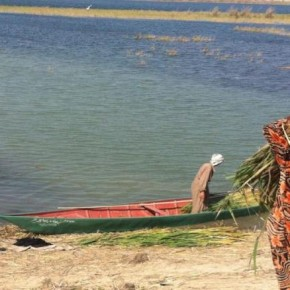 Ecological Collapse Circumscribes Traditional Women's Work in Iraq's Mesopotamian Marshes