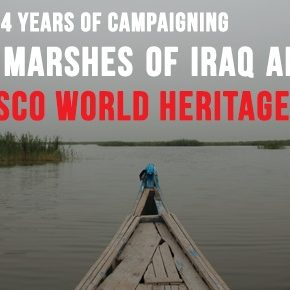 A Great Achievement After 4 years of Campaigning: The Marshes of Iraq Inscribed as UNESCO World Heritage