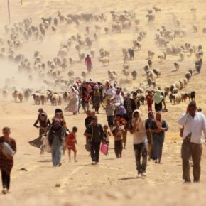 Kurdish Officials Shut Down Group Aiding Yezidis