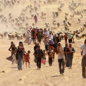 Yazidis in Iraq: 'The genocide is ongoing'