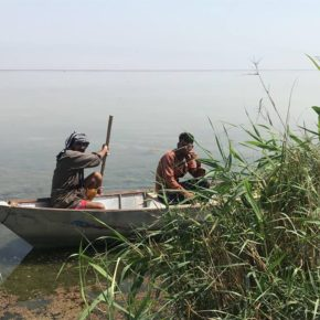 Iraqi Experts Say Iran Bears Responsibility for Drought in Hawizeh Marshes