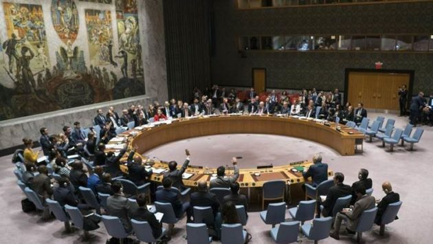 The UN Security Council: Iraq and Turkey Must Solve Their Problems Politically, Not Militarily